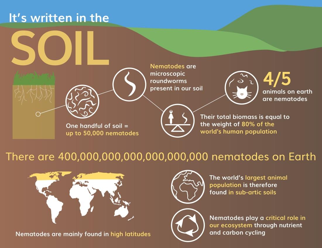 Nematode infographics_v2-01