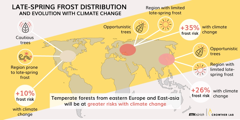 Map of areas where late-spring frost will put temperate forest at risk.